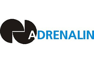 Detailbild zu :  Adrenalin - Advanced Fractal Companies Use Information Supply Chain