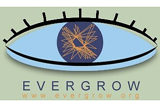 Detailbild zu :  EVERGROW: Ever-growing global scale-free networks, their provisioning, repair and unique functions.